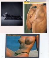 Lot 3 CPM  Femmes Seins Nus    Non Circulées - Nus Adultes (< 1960)