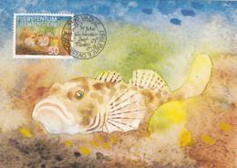 Liechtenstein 1987 Maxicard Scott #865 50rp Cottus Gobio Bull Head Fish - Cartes-Maximum (CM)