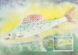 Liechtenstein 1987 Maxicard Scott #867 1.10fr Thymallus Thymallus Grayling Fish - Cartes-Maximum (CM)