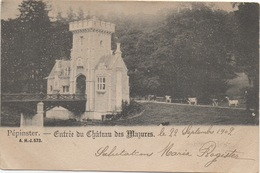 CPA  BELGIQUE PEPINSTER Entrée Du Château Des Mazures 1902 (avec Des Vaches) - Pepinster