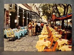 (FG.K70) SALSOMAGGIORE TERME - VIALE ROMAGNOSI Animata (PARMA) Viaggiata 1978 - Parma