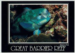 (028..753) Australien, Great Barrier Reef - Great Barrier Reef
