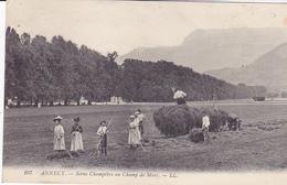 Cpa -74-annecy-animée-scene Champetre Au Champ De Mars-edi L.L N°107 - Annecy