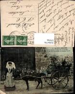 579784,Frau Esel Eselgespann Lo Pito Limouzino Tiergespann - Tierwelt & Fauna