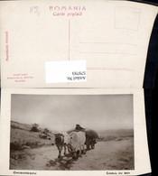 579793,Künstler Ak Grigorescu Carul Cu Boi Kuhgespann Rinder Kühe Tiergespann - Tierwelt & Fauna