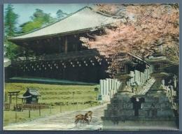CPM 3D - TEMPLE JAPONAIS - NIGATSUDO - Bouddhisme