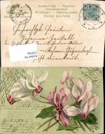 579764,Präge Lithographie Blumen - Ansichtskarten