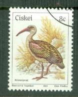 Ciskei: 1981/90   Birds   SG12   8c    Used - Ciskei