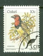 Ciskei: 1981/90   Birds   SG14   10c    Used - Ciskei