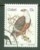 Ciskei: 1981/90   Birds   SG15   15c    Used - Ciskei