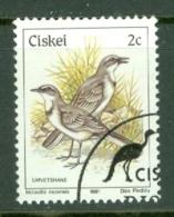 Ciskei: 1981/90   Birds   SG6   2c    Used - Ciskei