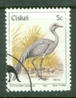 Ciskei: 1981/90   Birds   SG9   5c    Used - Ciskei