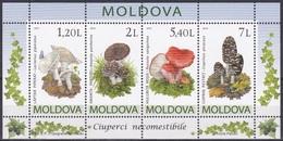 Moldawien Moldova 2010 Pilze Mushrooms Champignons Hongos Funghi Pantherpilz Täubling Tintling, Bl. 49 ** - Moldawien (Moldau)
