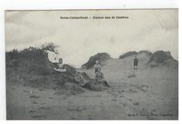 Heide-Calmpthout  Duinen Aan De Cambus 4615, F. Hoelen,Phot. Cappellen - Kalmthout