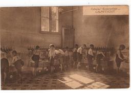 """CALMPTHOUT   Colonie """"Kinderwelzijn"""" - Kalmthout"""