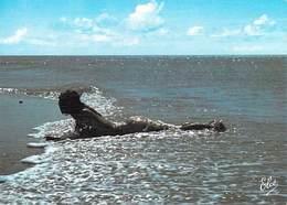 NU  Artistique Sur La Plage  (nu Nue  Nus Nude Nudisme Naturisme ) Editions :Elcé N 3992 *PRIX FIXE - Illustrators & Photographers