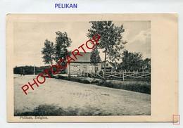 PELIKAN-Cimetiere-Carte Allemande-Periode Guerre 14-18-1WK-Belgien- - Lichtervelde