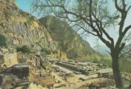 Delphes - Vue Du Temple D'Apollon - Greece