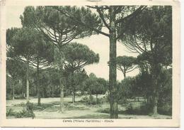 X4432 Cervia (Ravenna) - La Pineta - Notte Nuit Night Nacht Noche / Viaggiata 1942 - Italie