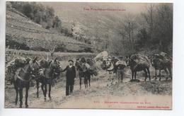 MULETIERS TRANSPORTEURS DE BOIS (66) - ANES - Autres Communes