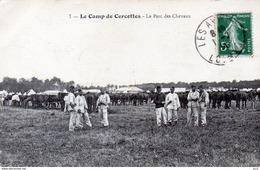 CAMPS - Camp De Cercottes - (Chevaux) - Militaria