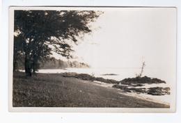 MAURITIUS Ca 1930 OLD PHOTO POSTCARD 2 Scans - Mauritius