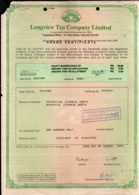 India 1994's Longview Tea Company Ltd. Share Certificate # FA12 - Industry