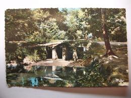 Carte Postale Foret Du Gavre (44) Les Arches De La Maillardais (Petit Format Couleur Non Circulée) - France