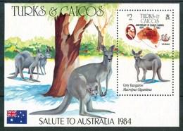 1984 Turks & Caicos Charles Darwin Mappe Cartes Maps Canguri Kangaroos MNH** No135 - Turks E Caicos