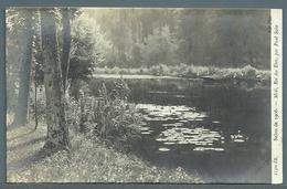 CPA - SALON DE 1906 - MIDI, ROI DES ÉTÉS (PAUL SAÏN) - Peintures & Tableaux