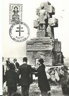 29 Ile De  Sein Compagnon De La Liberation Medaille De La Resitance Croix De Guerre Avec Palmes - Ile De Sein