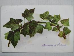 Souvenir De Forbach. Signée Barde - Forbach
