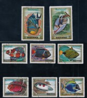 Manama Fish Theme, Lot Of 8 Stamps 1971 Issue Stamps - Manama