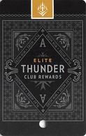Thunder Valley Casino Lincoln CA - BLANK Slot Card Copyright 2010 - Casino Cards