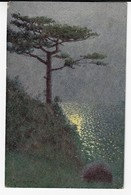 CPA -  Paysage Marin  (D19) - 1900-1949