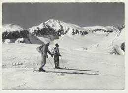 AK  Ski Wanderer Flims Casonsgrat Mit Piz Segnes Und Piz Sardona - Wintersport