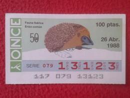 CUPÓN DE ONCE SPANISH LOTTERY LOTERIE SPAIN CIEGO BLIND LOTERÍA ESPAÑA FAUNA IBÉRICA FAUNE ERIZO COMÚN HÉRISSON HEDGEHOG - Lottery Tickets