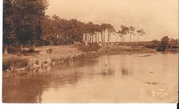 Lac Du Tanchet Les Sables D'Olonne - Sables D'Olonne