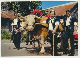 AK  Geschmückte Rinder Gespann Gruyere - Vaches