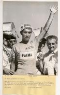 1969 PHOTO  UNITED PRESS EDDY MERCKX TOUR DE FRANCE CYCLISTE MONTARGIS - Cycling