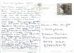 RSA South Africa 2004 Port Elzebeth Elephant Airmail Viewcard Rate - Elephants