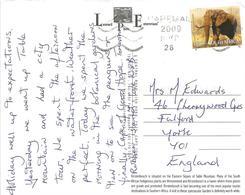 RSA South Africa 2009 Cape Town Elephant Botanical Garden Kirstenbosch Airmail Viewcard Rate - Elephants