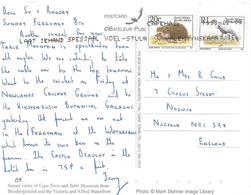 RSA South Africa 1998 Cape Town Wattled Crane Hedgehog Table Mountain Viewcard - Kranichvögel