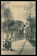 TOMAR - Estrada De S. Lourenço  Carte Postale - Santarem
