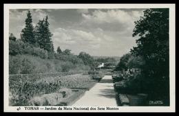 TOMAR - Jardim Da Mata Nacional Dos Sete Montes  ( Ed. LOTY Nº 45)  Carte Postale - Santarem