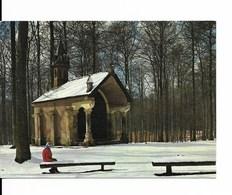 HOEILAART / HOEILAERT (1560) : Chapelle Notre-Dame De Bonne Odeur (ChOnapelle Welriekende), En Forêt De Soignes. CPSM. - Hoeilaart
