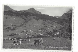 20613 - Les Diablerets Et La Route Du Pillon Vaches - VD Vaud