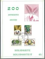 België  O.B.C.  Herdenkingskaart  1610 / 1613      (O)    ZOO - Antwerpen - Herdenkingskaarten