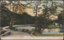 Endcliffe Woods, Sheffield, Yorkshire, C.1905 - Misch & Stock Postcard - Sheffield