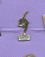 Rare Pins Patin A Glace Patinage Champigny Sur Marne I211 - Patinaje Artístico